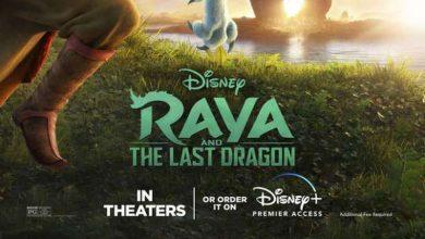 السينمات الخاصة بعرض فيلم الأنميشن والمغامراتRaya and the Last Dragon